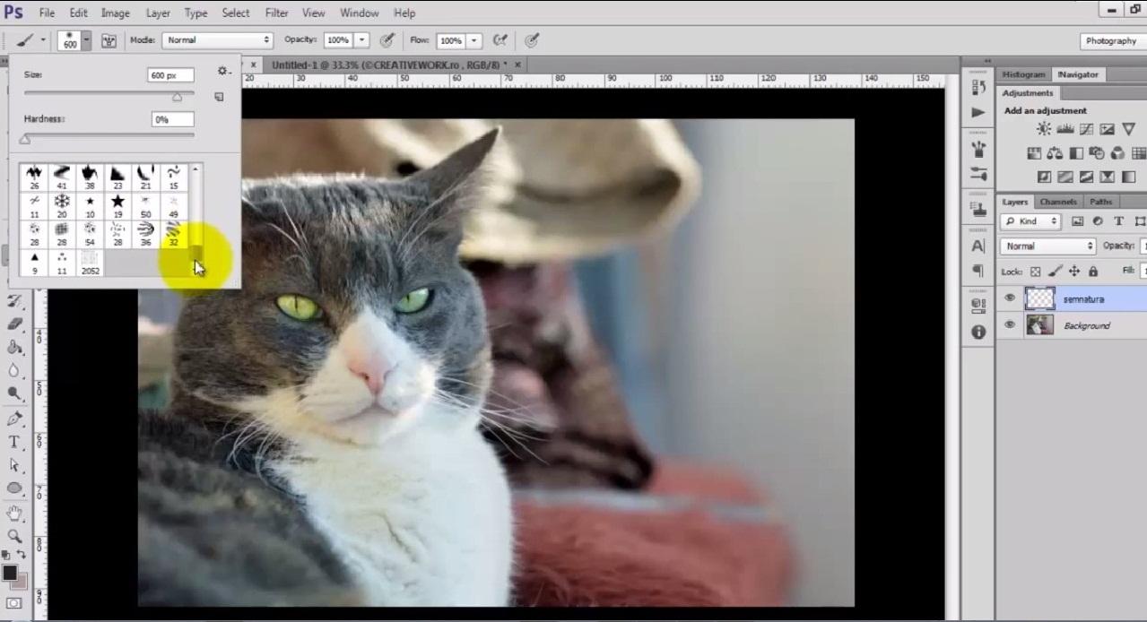 Semnarea fotografiilor in Adobe Photoshop CS6